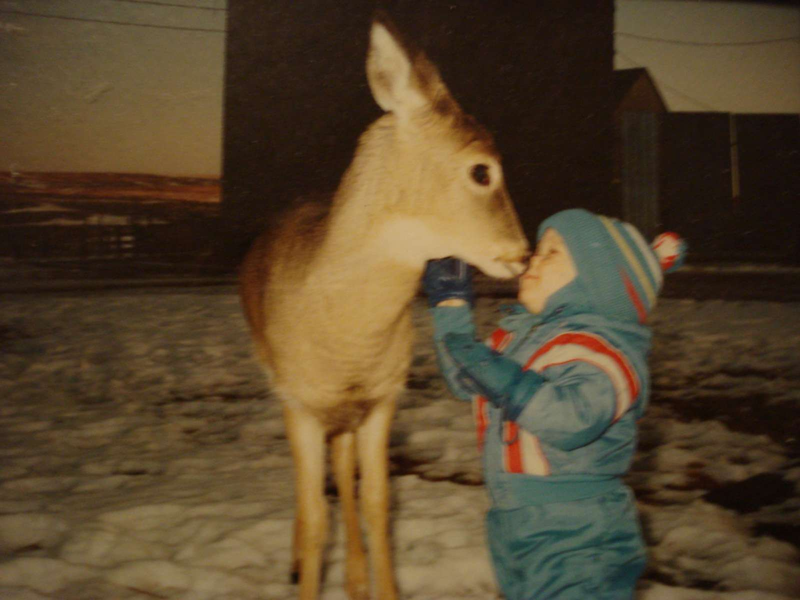 The Child and the Deer