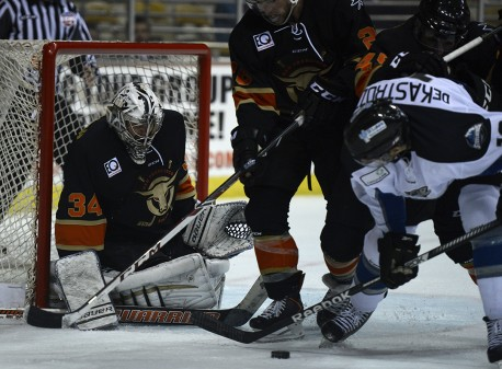 San Francisco Bulls Idaho Steelheads